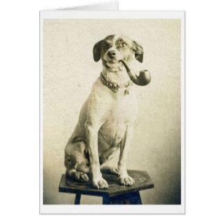 Vintage Pipe Smoking Dog, Card