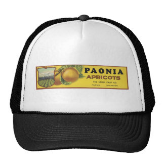 Vintage Poenia Apricots Crate Label, The Union Fru Hat