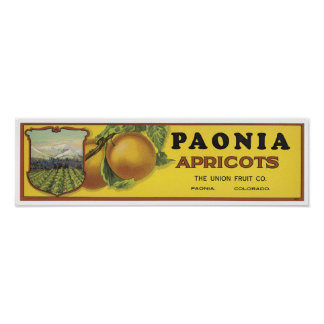 Vintage Poenia Apricots Crate Label The Union Fru Posters