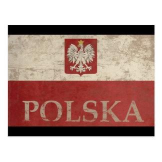 Vintage Polska Postcard