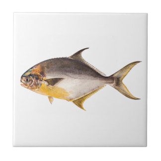 Vintage Pompano Fish- Game Fishes Template Blank Tile