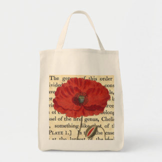 Vintage Poppy Antique Botanical Collage