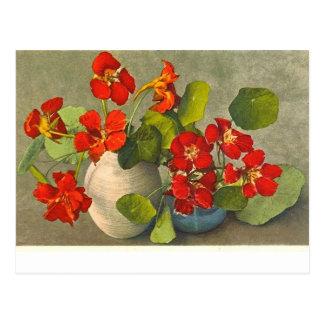 Vintage postcard of nasturtium bouquets.