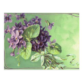 Vintage postcard purple flowers