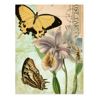 Vintage Postcard with Butterflies and Flowers