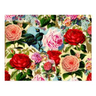 Vintage Pretty Chic Floral Rose Garden Collage Postcard