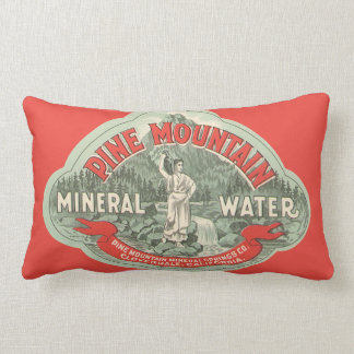 Vintage Product Label, Pine Mountain Mineral Water Lumbar Cushion