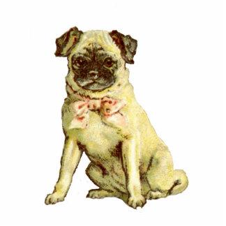 Vintage Pug Puppy Pin Photo Sculpture Badge