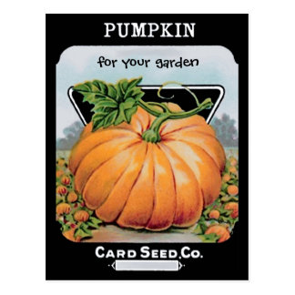 vintage pumpkin seeds art postcard