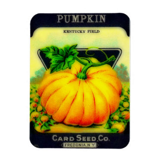 Vintage Pumpkin Seeds Packet - Magnet