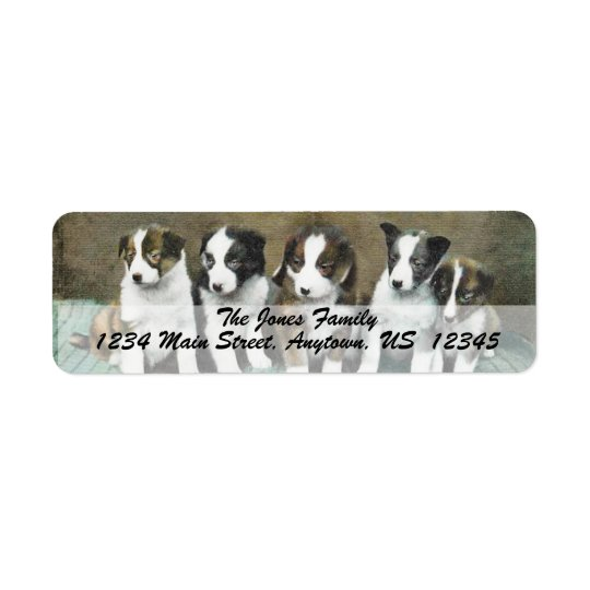 VINTAGE PUPPIES Custom Address Labels