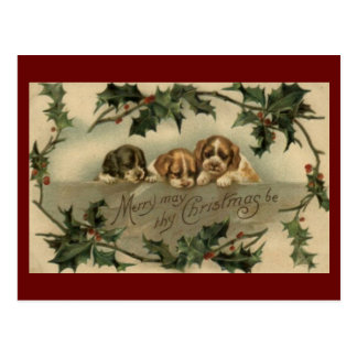 Vintage Puppy Trio Christmas Postcard