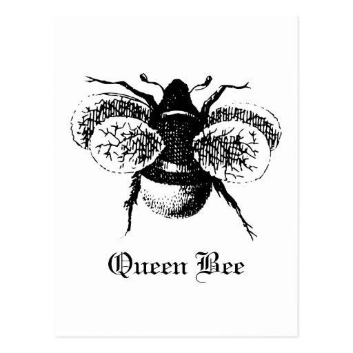 Vintage Queen Bee Postcards