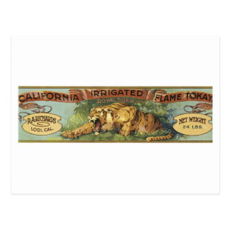 Vintage RA Richards Lodi Ca Flame Tokay Fruit Crat Postcard