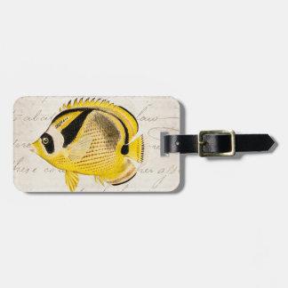 Vintage Raccoon Butterfly Fish - Antique Hawaiian Travel Bag Tag