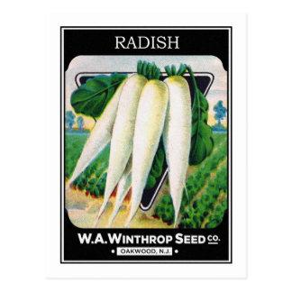 Vintage Radish Seed Package Label Postcard