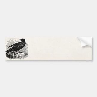 Vintage Raven Black Bird Crow Personalized Birds Bumper Sticker