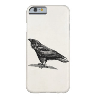 Vintage Raven Crow Blackbird Bird Illustration Barely There iPhone 6 Case