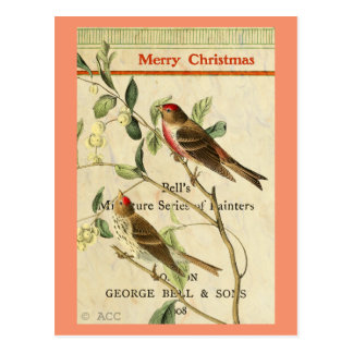 Vintage Red Birds / Merry Christmas Postcard