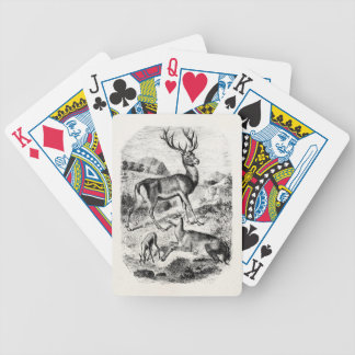 Vintage Red Deer Stag w/ Doe and Fawn Personalized Bicycle Playing Cards