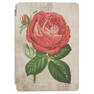 Vintage Red Hybrid Perpetual, Paul Neyron Rose iPad Air Cover