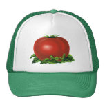 Vintage Red Ripe Tomato, Food Fruits Vegetables Trucker Hat