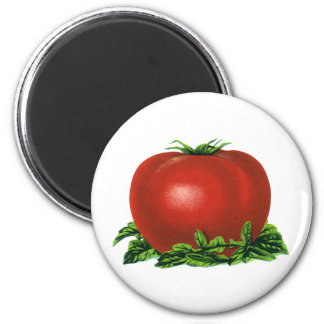 Vintage Red Ripe Tomato, Vegetables and Fruits 6 Cm Round Magnet