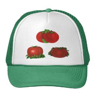 Vintage Red Ripe Tomatoes Food, Fruits, Vegetables Cap