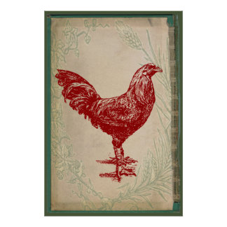 Vintage Red Rooster Shabby Chic Grunge Chicken Poster