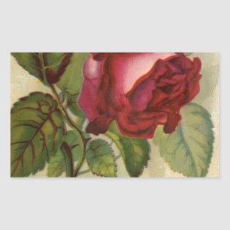 Vintage Red Rose Rectangular Sticker