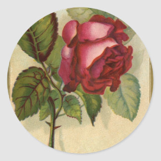 Vintage Red Rose Round Sticker