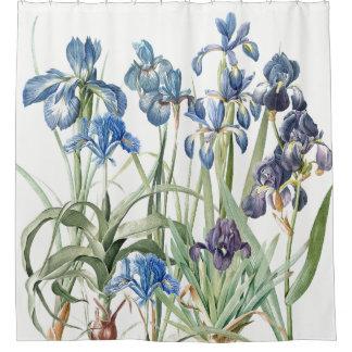Vintage Redoute Iris Flower Garden Shower Curtain