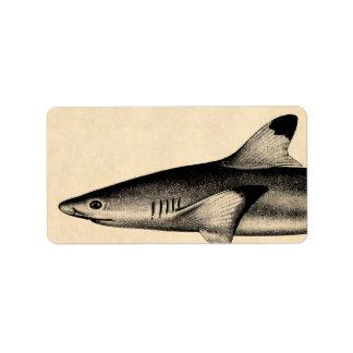 Vintage Reef Shark Illustration Black Tipped Label