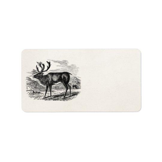 Vintage Reindeer Personalised Deer Illustration Label
