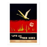 Vintage restored save our wild life trumpeter swan post cards