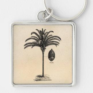 Vintage Retro Brazilian Palm Tree Template Palms Key Chains
