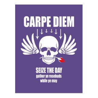 Vintage Retro Carpe Diem. Seize the day Postcard