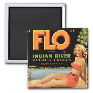 Vintage Retro Kitsch Fruit Crate Pin Up Flo Girl Magnets
