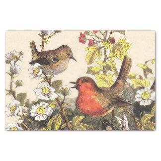 Vintage Robins Spring Birds Tissue Paper