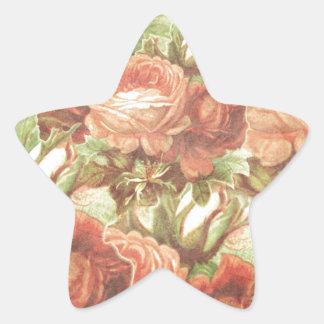 Vintage Roses Grunge Star Sticker