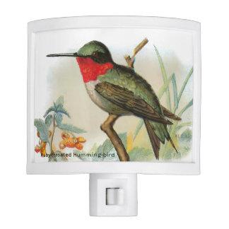 Vintage Ruby Throated Hummingbird Nightlight Nite Lights