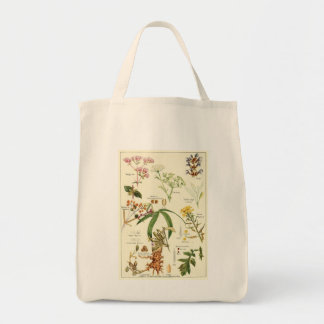 Vintage sage illustration groceries tote bag