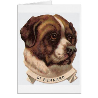 Vintage Saint Bernard Dog, Card