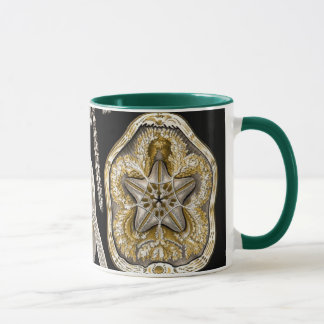Vintage Sand Dollars Sea Urchins by Ernst Haeckel Mug