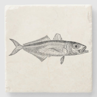 Vintage Scad Fish Aquatic Fishes Blank Template Stone Beverage Coaster