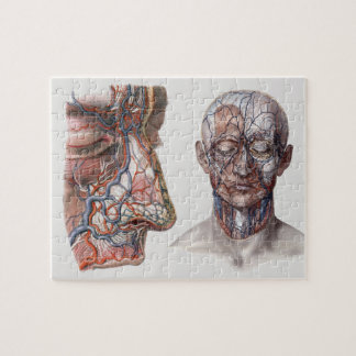 Vintage Science Human Anatomy Heads and Faces Jigsaw Puzzle
