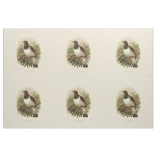 Vintage Science NZ Birds - Kereru Fabric