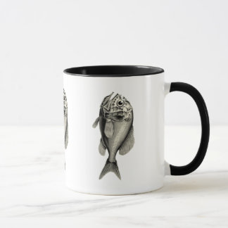 Vintage Science NZ Fish - Orange Roughy Mug