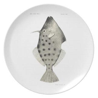 Vintage Science NZ Fish - Smooth Leatherjacket Plates
