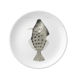 Vintage Science NZ Fish - Smooth Leatherjacket Porcelain Plates
